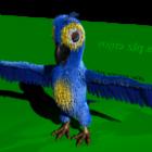 Cartoon Parrot Animal