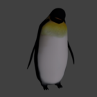 Emperor Penguin Animal