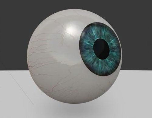 مقلة العين البشرية