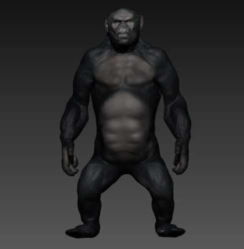 Realistinen gorilla