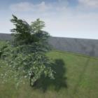 Lowpoly Oak Tree