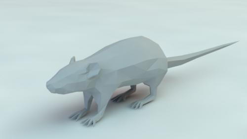 Lowpoly Rata animal