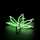 Leaf Neon Light dekorace