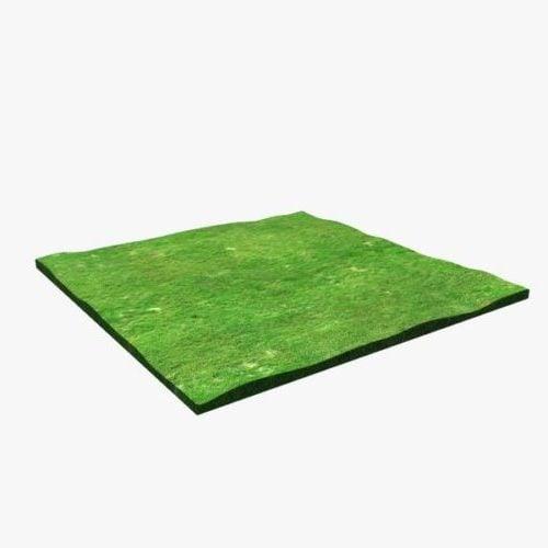 Rectangular Grass Field