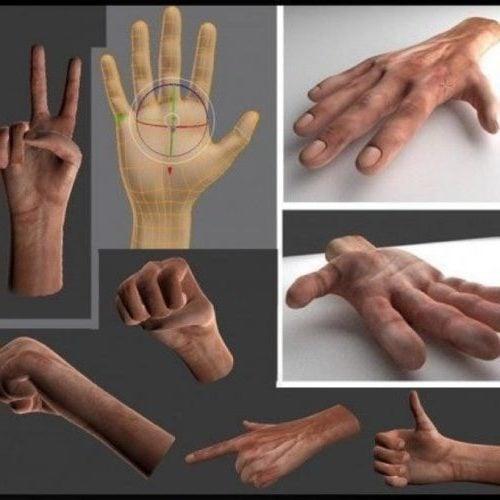 أيدي الإنسان مع Rigged