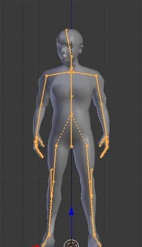 Rigged جسم الإنسان الذكور