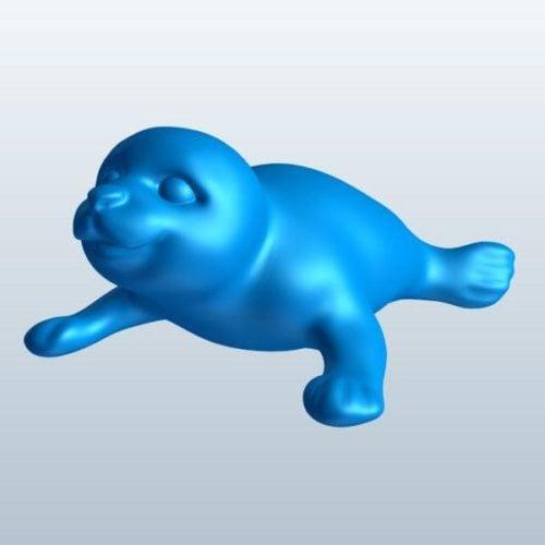 Seal Baby Animal