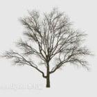 شجرة جافة في الهواء الطلق