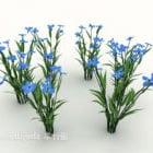 Garden Blue Plant Flower