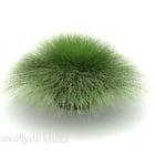 Green Garden Roślin Małe Krzewy