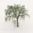 سحابة شجرة الصنوبر