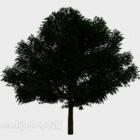 Pianta del giardino dell'albero del cortile