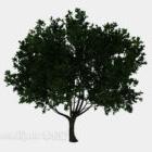 Evergreen Tree V1