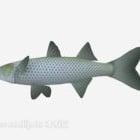 River Grassfish