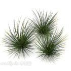 Grüne Buschgraspflanze