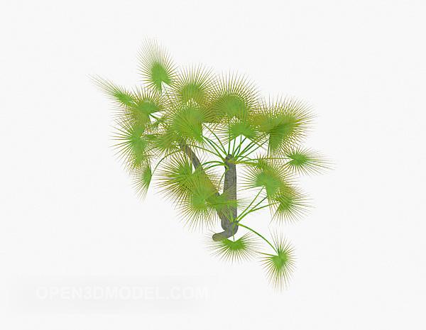 Green Needle Plant