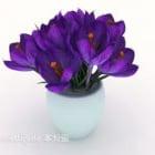 Purple Bouquet Plant