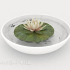 Home Water Lily Potted Plant