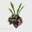 Interior Decorative Plant
