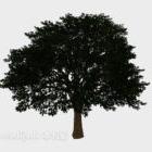 Breites Blatt des modernen Landschaftsbaums