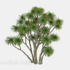 Mehrzweigbäume Breites Blatt