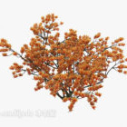 Outdoor Bouquet Tree Yellow Leaf