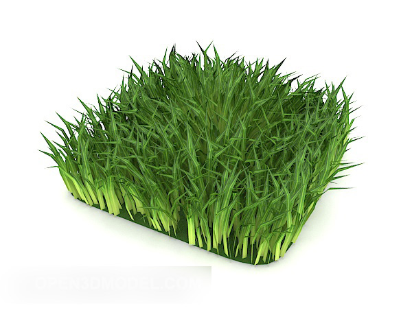 Outdoor Green Grass Realistic