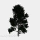 بارك شجرة خضراء كبيرة