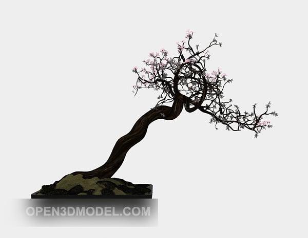 Luumu Bonsai puu
