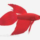 Red Goldfish Animal