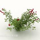 Albero del fiore della pianta verde dello zafferano