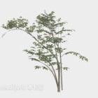 Albero sottile verde del ramo