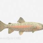 Animale acquario di pesce maculato