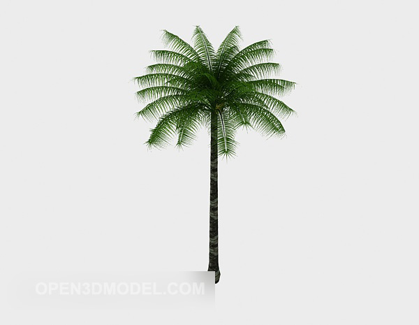 Tropical Palm Tree Lowpoly