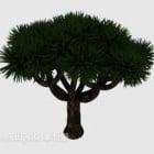 طبيعة شجرة الصنوبر الكبيرة