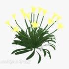 Bush plante fleur jaune