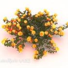 Krzewy kwiatowe żółte roślin