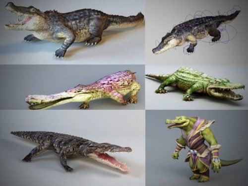 10 مجموعة نماذج التمساح ثلاثية الأبعاد