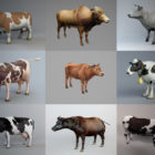 10 Realistic Cow 3D Models Collection