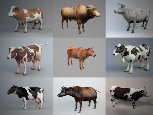 10 realistista lehmän 3D-mallikokoelmaa