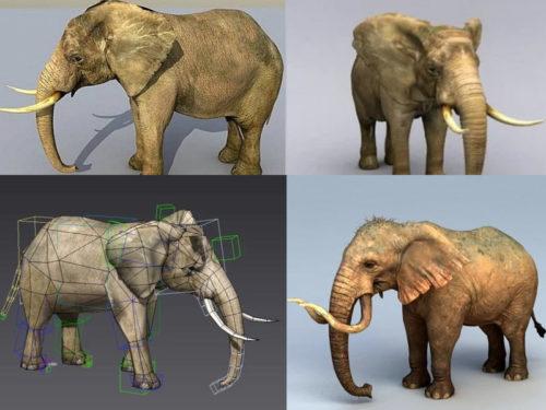 10 نماذج واقعية الفيل 3D