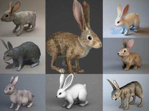 Colección de 10 modelos de conejos realistas en 3D