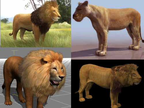 15 Lion 3D Models Collection Free Download