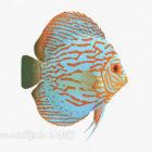 Colore Pesce Mare Animale