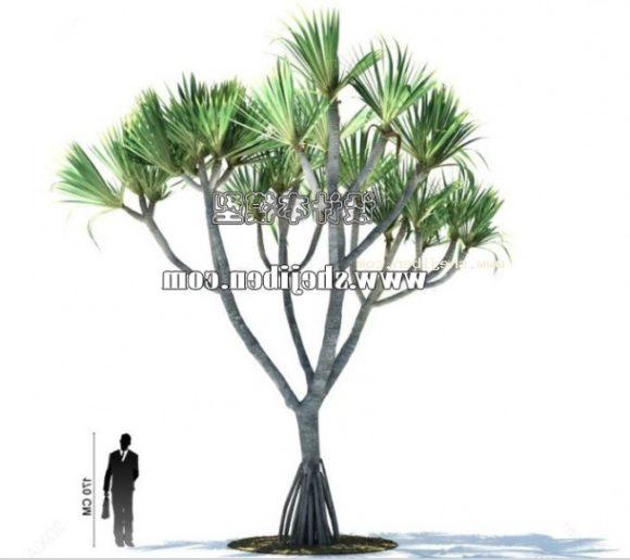 Sabal Palm Tree V1