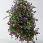Front Door Flower Bushes
