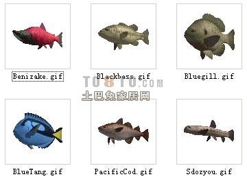 30 Animal Fish Set