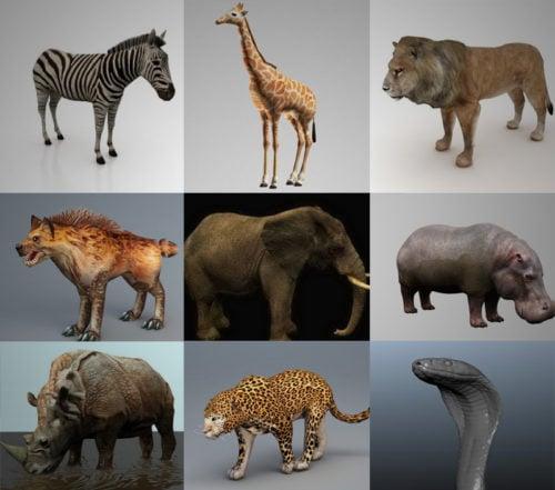 Colección de modelos 3D de animales africanos