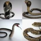 10 Realistisk Snake 3D-modeller