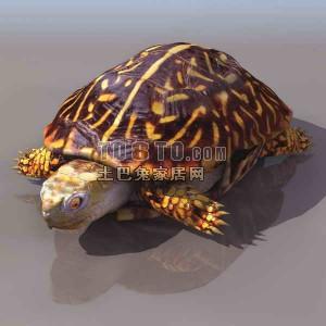 Tortoise Lowpoly Animal